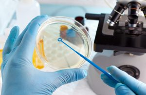 R&D-tax-credits-for-biotechnology-companies